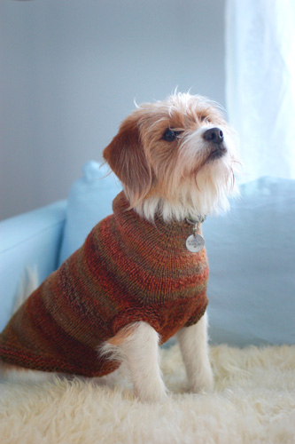 Dog Sweaters Hello Yarn